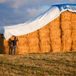 hay-tarps-cover